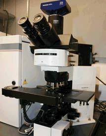 Olympus BX 50 upright fluorescence microscope