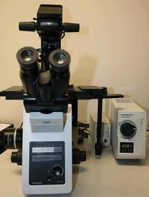 Olympus IX-73 Inverted Fluorescence Microscope with Olympus DP73 computer controlled CCD camera
