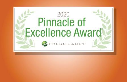 Image of Pinnacle of Excellence Award graphic